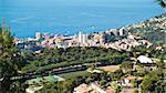 Monte Carlo panorama