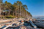 U.S.A., Washington,  Olympic National Park, Ruby Beach
