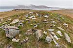 Thule house remains in Dundas Harbour, Devon Island, Nunavut, Canada, North America