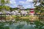 Daikoku-ji Temple in Kyoto, Japan.