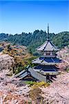 Yoshinoyama, Japan at Kinpusenji Temple Pagoda.