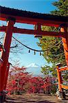 Asia, Japan, Honshu, Mt Fuji 3776m, Arakura Sengen Jinja, Unesco World Heritage site