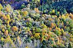 Autumn time in the Serra da Estrela Nature Park, Portugal