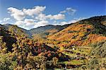 Autumn in the valley of Zezere river. Serra da Estrela Nature Park, Portugal