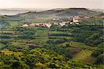 Vineyards and the hill top town of Vedrijan, Goriska Brda, Slovenia, Europe