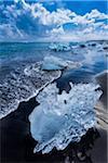 Pieces of Ice on the beach at Jokulsarlon, Iceland
