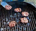 Meat on grill, Skine, Sweden