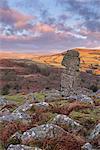 Bowerman's Nose on Dartmoor, Dartmoor National Park, Devon, England, United Kingdom, Europe