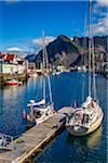 Sailboats at Dock, Henningsvaer, Austvagoya, Lofoten Archipelago, Norway