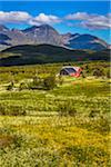 Leknes, Vestvagoya, Lofoten Archipelago, Norway