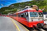 Bergen bound Train on Bergen Line, Myrdal Station, Myrdal, Aurland, Sogn og Fjordane, Norway