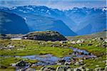 Stream Along Bjorgavegen Tourist Route from Aurland to Laerdal, Sogn og Fjordane, Norway