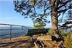 Outlook on Mountain with Bench, Hochstein, Dahn, Dahner Felsenland, Pfalzerwald, Rhineland-Palatinate, Germany