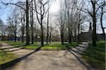 Forked Path in Spring with Sun, Husum Schlosspark, Schleswig-Holstein, Germany