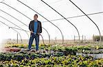 Male horticulturalist watering plants in plant nursery polytunnel