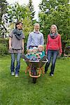 Family garden Father pushing kids wheelbarrow