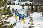 Three skiers cross-country skiing snow trees