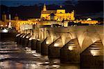 Mosque (Mezquita) and  Roman Bridge with illuminations at night sky , Cordoba, Andalusia, Spain, Europe