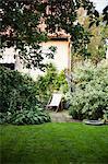 Back garden and sun chair