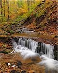 Cascade of Creek in Autumn, Kaskadenschucht, Sandberg, Gersfeld, Rhon Mountain Range, Hesse, Germany