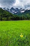 Juilan Alps just outside Kranjska Gora, Triglav National Park, Upper Carniola, Slovenia, Europe