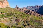 View of vegetation over the Caldera de Tejeda, with Roque Nublo and Roque Bentayga in the background, Gran Canaria, Las Palmas, Canary Islands