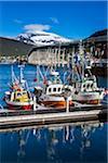 Bridge and marina, Tromsoe, Troms, Northern Norway, Norway
