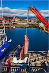 Unloading whale meat, Henningsvaer, Austvagoya, Lofoten, Nordland, Northern Norway, Norway