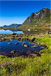 Scenic view of Rolvsfjord, on the island of Vestvagoy, Lofoten Archipelago, Nordland, Northern Norway, Norway