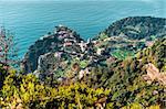 Birds Eye View of Riomaggiore. Riomaggiore is the first village of the Cinque Terre, Italy.