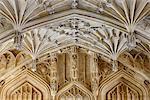 Europe, United Kingom, England, Oxfordshire, Oxford, Divinity School