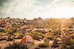 Tent, Joshua Tree National Park, California, US