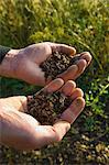 Farmer soil sampling, Gloucestershire, England