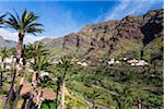 Houses among Palm Trees on Terraced Fields, Valle Gran Rey, La Gomera, Canary Islands, Spain