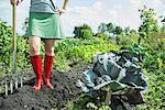 Woman vegetable garden fork harvest gumboots