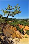 Ocher Breakage in Summer, Le Colorado Provencal, Rustrel, Provence, Vaucluse, France