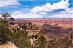 North Rim, Grand Canyon National Park, Arizona, USA