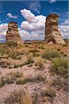Elephant's Feet near Tonalea, Arizona, USA