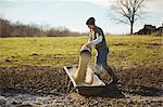 Mature male farmer pouring grain into feeding trough in field
