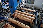 France, Aquitaine Landes (40), Mimizan, sawmill