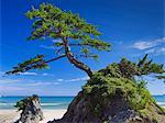 Tottori Prefecture, Japan