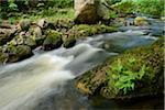 Ilse, Ilse Valley. Heinrich Heine Trail, Ilsenburg, Harz National Park, Harz, Saxony-Anhalt, Germany