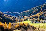 Europe, France, Haute Savoie, Rhone Alps, Chamonix,  Le Tour, autumn landscape