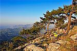 Mountain bikers in Stavros, Selakano overlooking Agios Nikolaos, Crete, Greece, Europe, MR