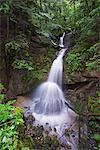 Europe, Switzerland, canton of Schwyz, Mt Rigi, waterfall