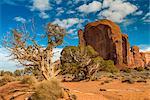 Scenic desert landscape, Monument Valley Navajo Tribal Park, Arizona, USA