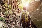 Backpacker hiking in the rainforest