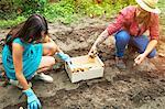 Young couple harvesting potatoes in vegetable garden