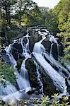 Swallow Falls, Betws-y-Coed, Snowdonia National Park, Conwy, Wales, United Kingdom, Europe
