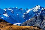 View from Alp Languard at Bernina range
